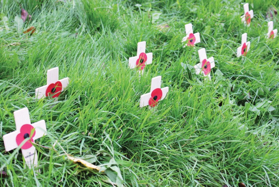 Remembrance poppies on crosses